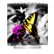 Butterfly And Lilac Shower Curtain