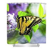 Butterfly And Lilacs Shower Curtain