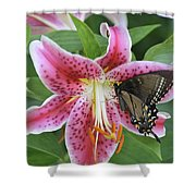 Butterfly And Lilly Shower Curtain