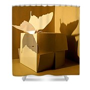 Butterfly And The Cube 1 Shower Curtain