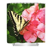 Butterfly And The Geranium Shower Curtain