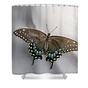 Butterfly At Picnic Shower Curtain
