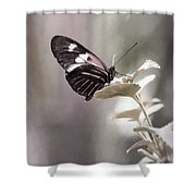 Butterfly Bliss Shower Curtain