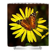 Butterfly Bloom Shower Curtain