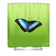 Butterfly Blue Morpho On Green Shower Curtain