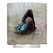 Butterfly Blue On Groovy 2 Shower Curtain