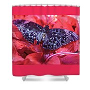 Butterfly Blues - Constable  Shower Curtain