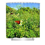 Butterfly Bonanza Shower Curtain
