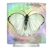 Butterfly, Butterfly Shower Curtain