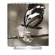 Butterfly Close-up Shower Curtain