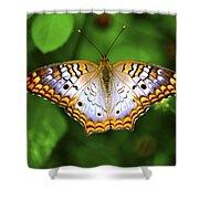 Butterfly Closeup Shower Curtain