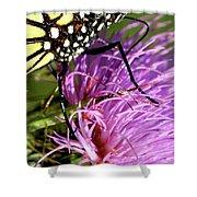 Butterfly Closeup Vertical Shower Curtain