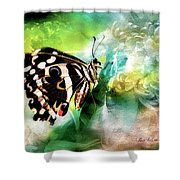 Butterfly Daydream Shower Curtain