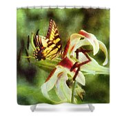 Butterfly Daylily Shower Curtain