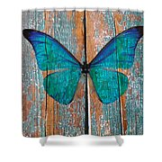 Butterfly Exhibition 1 Shower Curtain