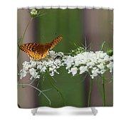 Butterfly Feeding Shower Curtain