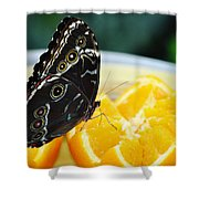Butterfly Haven Citrus Shower Curtain
