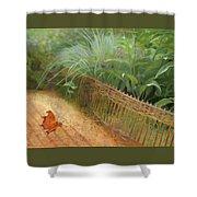 Butterfly In A Small Zen Sand Garden Shower Curtain