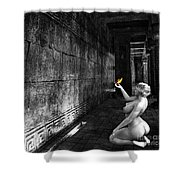Butterfly In The Catacombs  2 Shower Curtain