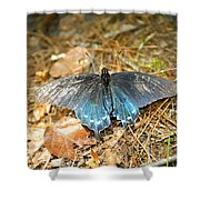 Butterfly In The Forest Shower Curtain