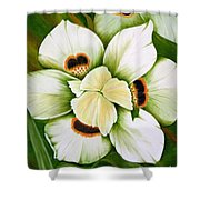 African Butterfly Iris Shower Curtain