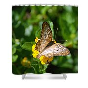 Butterfly Land Shower Curtain