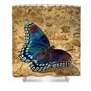 Butterfly Landing Shower Curtain