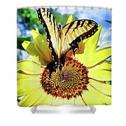 Butterfly Meets Sunflower Shower Curtain