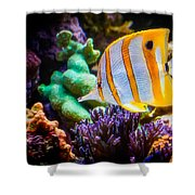 Butterfly Of The Sea Shower Curtain