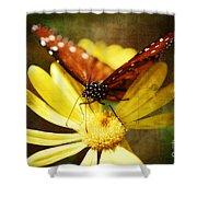 Butterfly On A Daisy  Shower Curtain