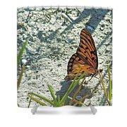 Butterfly On Beach Shower Curtain
