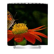 Butterfly On Blossom Shower Curtain