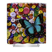 Butterfly On Buttons Shower Curtain