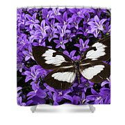 Butterfly On Campanula Get Mee Shower Curtain