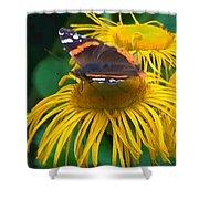 Butterfly On Chrysanthemum Flowers Shower Curtain