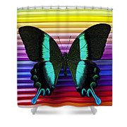 Butterfly On Colored Pencils Shower Curtain
