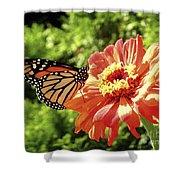 Butterfly On Flower Shower Curtain