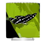 Butterfly On Green Shower Curtain