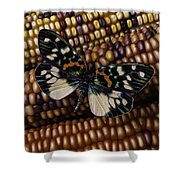 Butterfly On Indian Corn Shower Curtain