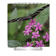 Butterfly On Pink Flowers Shower Curtain