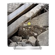 Butterfly On Railroad Tracks Shower Curtain
