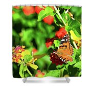 Butterfly On The Red Flower 2 Shower Curtain