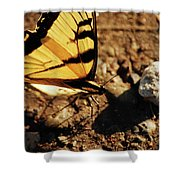 Butterfly On The Rocks Shower Curtain