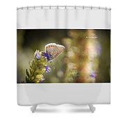 Butterfly On The Spot Shower Curtain