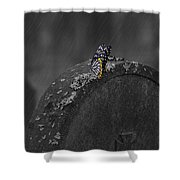 Butterfly On Tombstone Shower Curtain