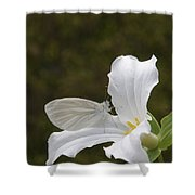 Butterfly On Trillium  Shower Curtain