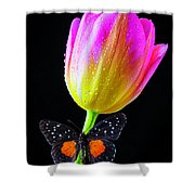 Butterfly On Yellow Pink Tulip Shower Curtain