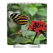 Butterfly Orange And Yellow Shower Curtain