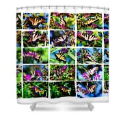 Butterfly Plethora II Shower Curtain