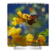 Butterfly Pollinating Flowers  Shower Curtain